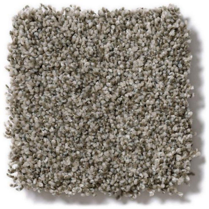 Shaw Anderson Tuftex Stainmaster PetProtect Oliver's Twist ZZ015 Residential Carpet