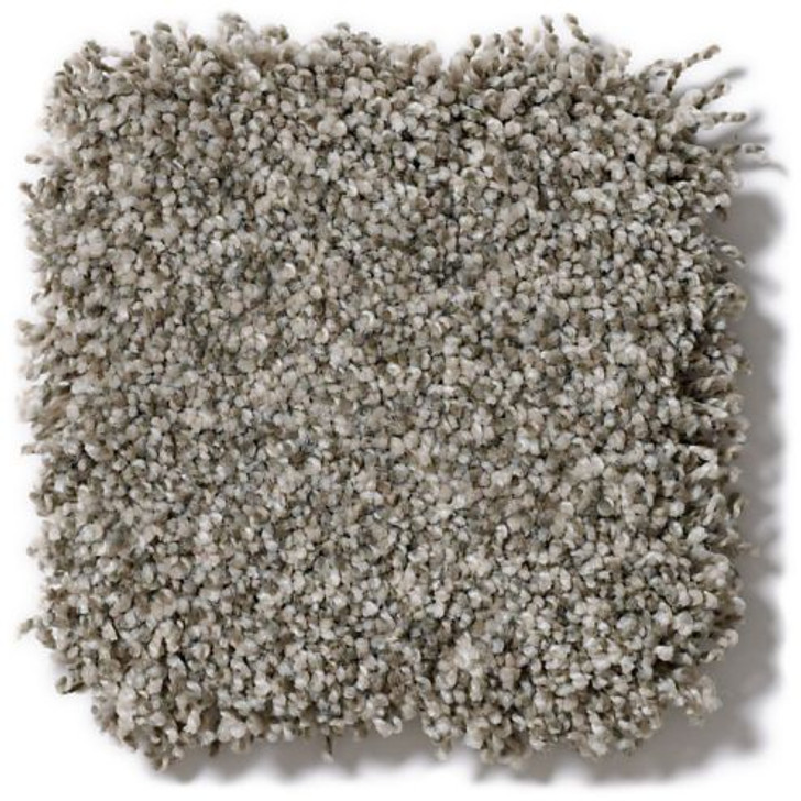 Shaw Anderson Tuftex Stainmaster PetProtect Mollie's Turn ZZ016 Residential Carpet