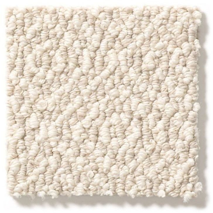 Shaw Anderson Tuftex Marley ZZB50 Residential Carpet
