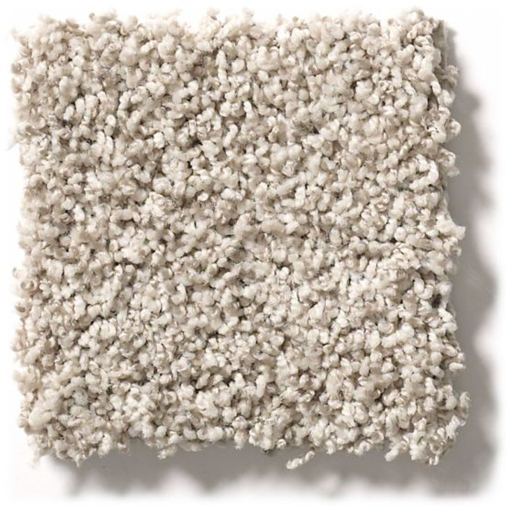 Shaw Anderson Tuftex Builder Music Maker ZZB69 Residential Carpet