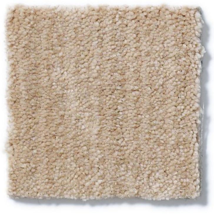 Shaw Anderson Tuftex Shadow Hills Z6887 Residential Carpet