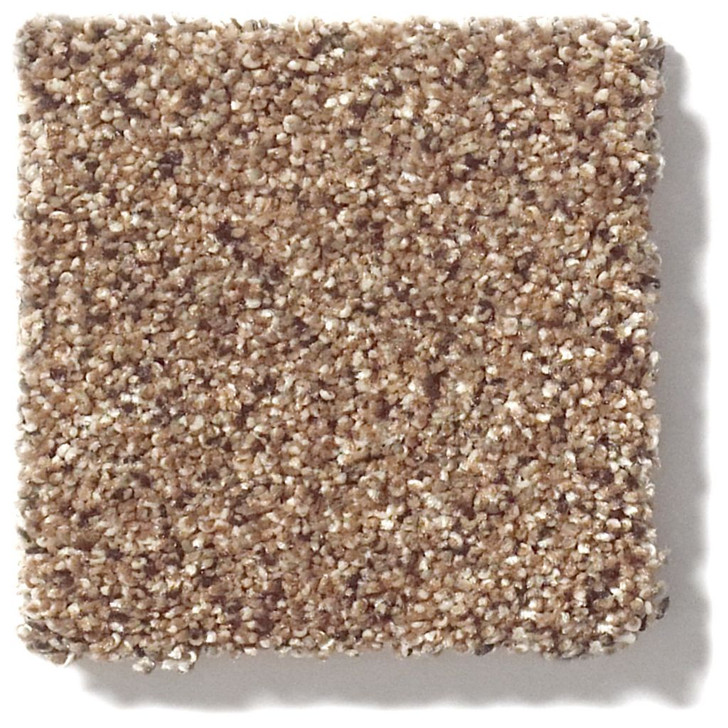 Shaw Foundations Take The Floor Accent I 5E011 Residential Carpet