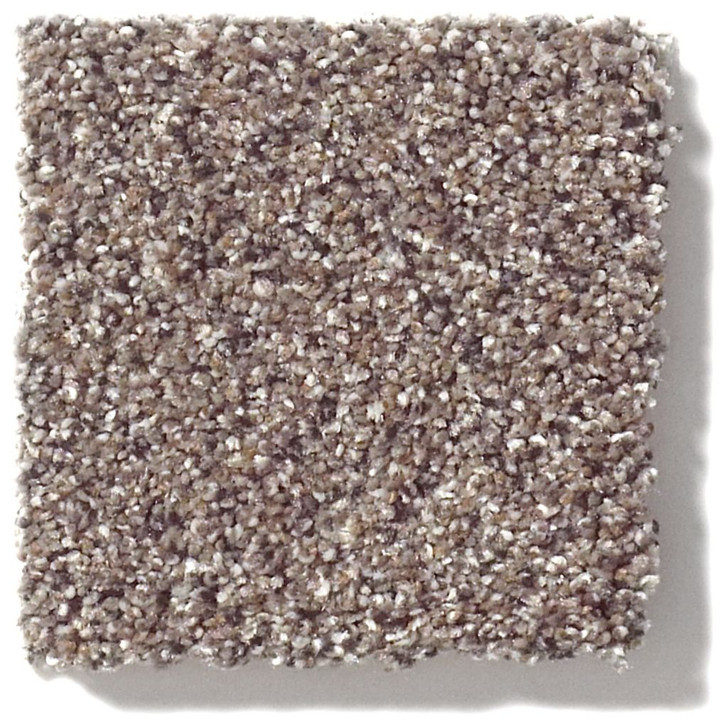 Shaw Foundations Take The Floor Accent II 5E012 Residential Carpet