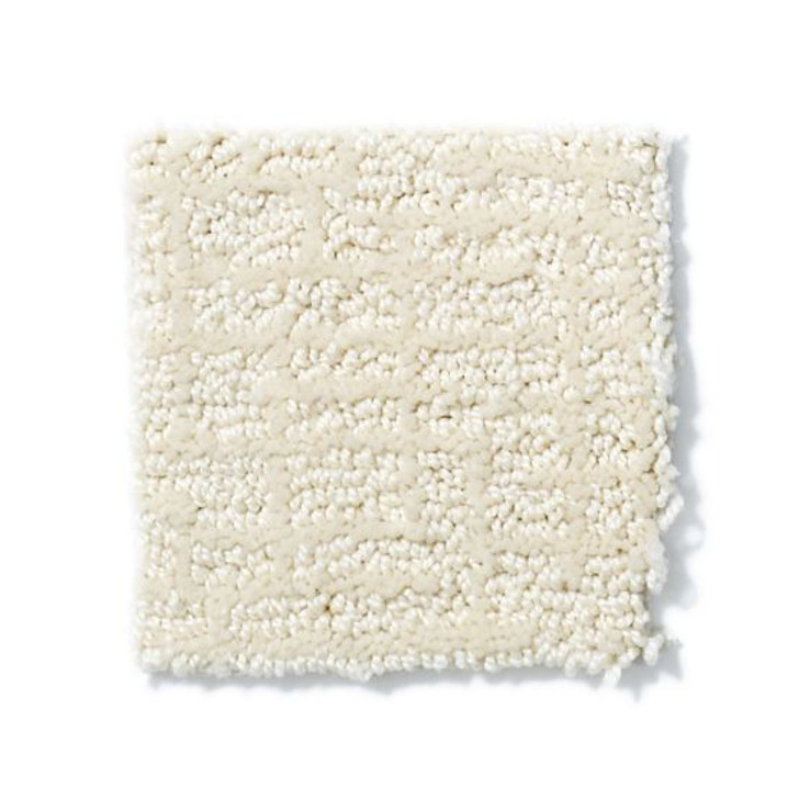 Shaw Anderson Tuftex Builder Gizmo ZB946 Residential Carpet