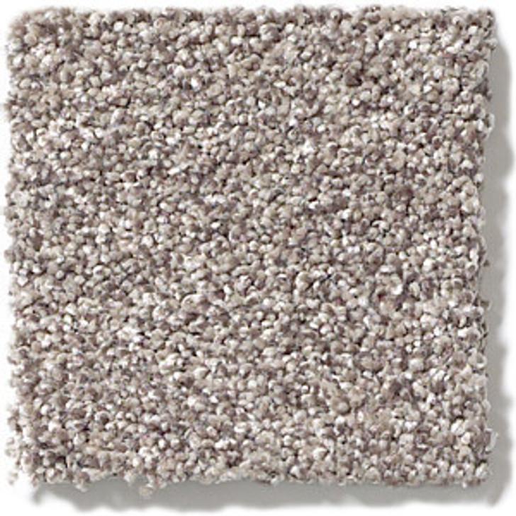 Shaw Foundations Take The Floor Tonal II 5E009 Residential Carpet