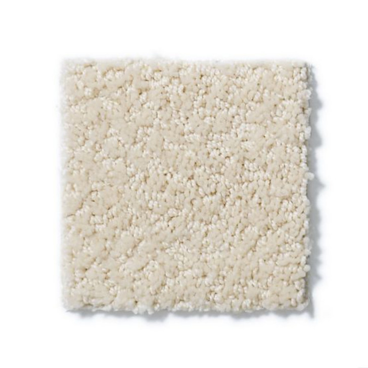 Shaw Anderson Tuftex Builder Pepper ZB954 Residential Carpet