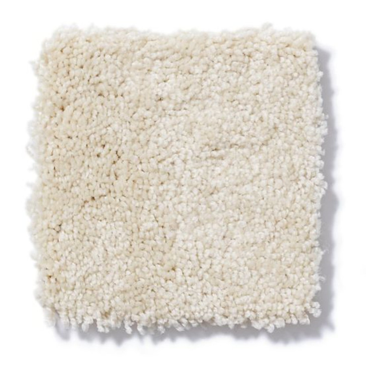 Shaw Anderson Tuftex Builder Kirby ZL956 Residential Carpet