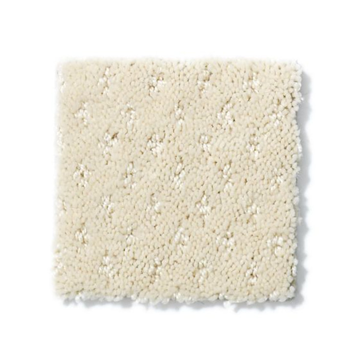 Shaw Anderson Tuftex Builder Sox ZL947 Residential Carpet
