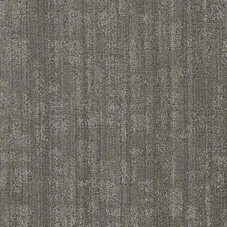 DW Select Oxford 8640 Residential Carpet