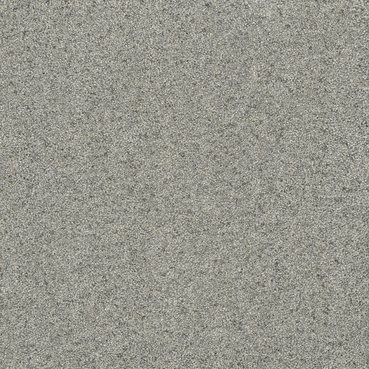Dream Weaver Astounding II 2545 Residential Carpet