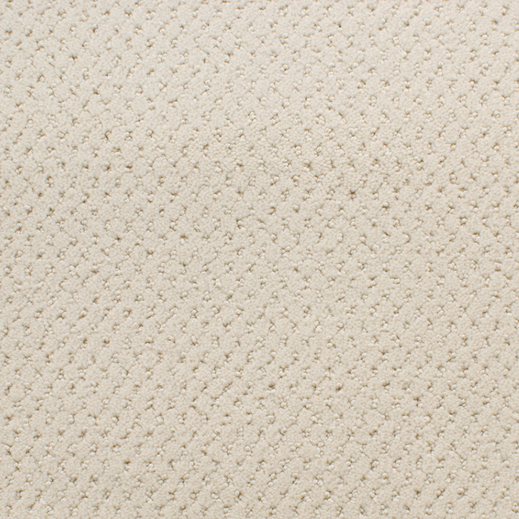 Fabrica Power Point 602PP StainMaster Residential Carpet