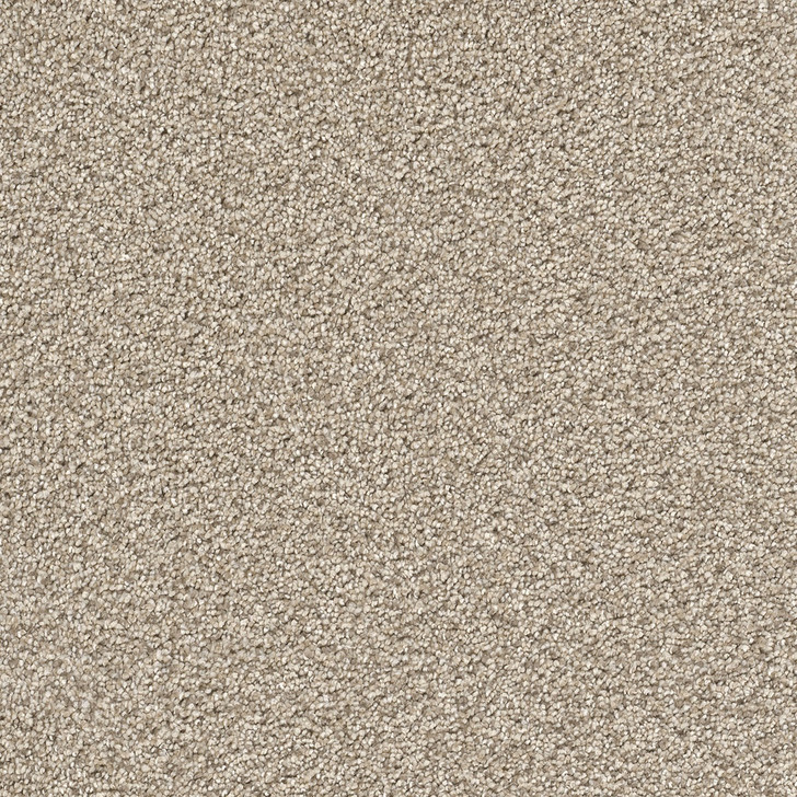 Dreamweaver Cape Cod 2540 Residential Carpet