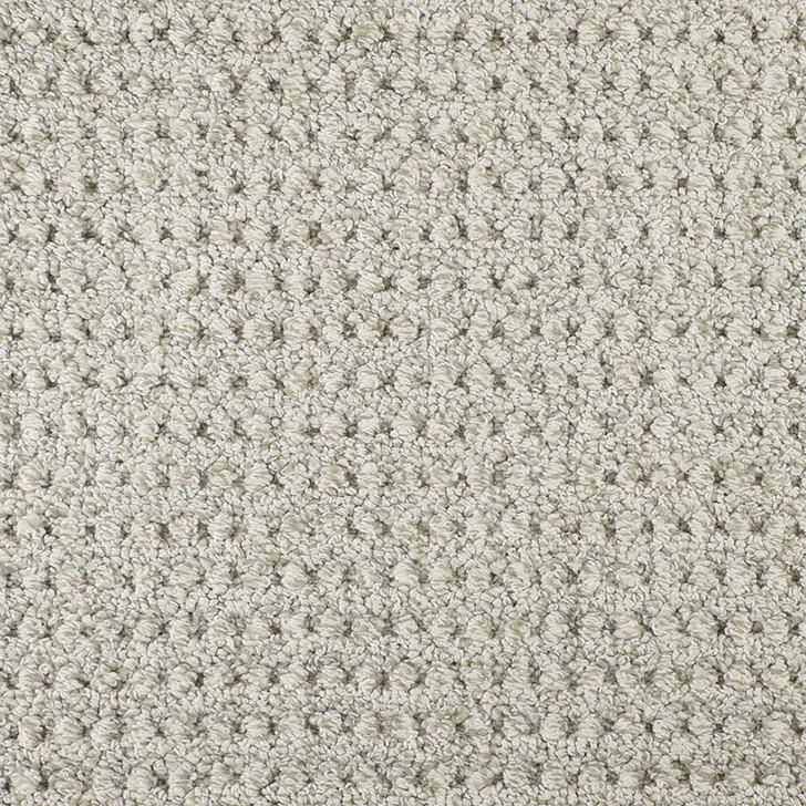 Fabrica Savanna Weave 824SW Nylon Residential Carpet