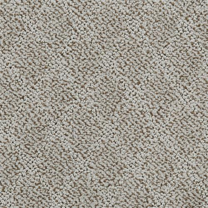 Dixie Home Fine Art D051 Residential Carpet