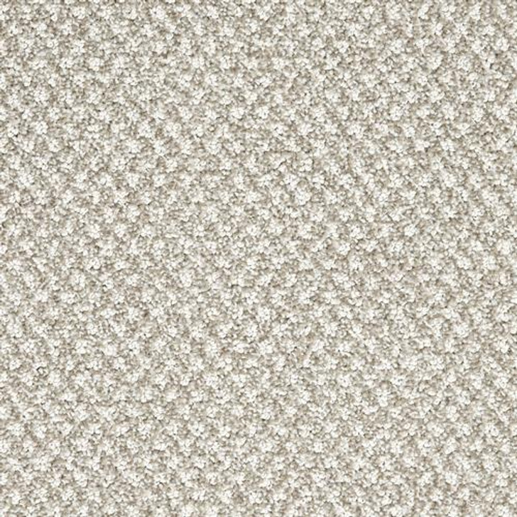 Dixie Home Finery D029 Residential Carpet