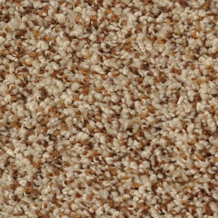 Dixie Home Bombay 40220 Residential Carpet