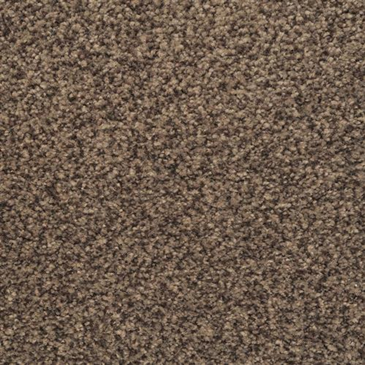 Dixie Home Chromatic Touch 2368 Residential Carpet