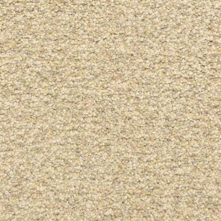 Dixie Home Colorworks 6865 Residential Carpet