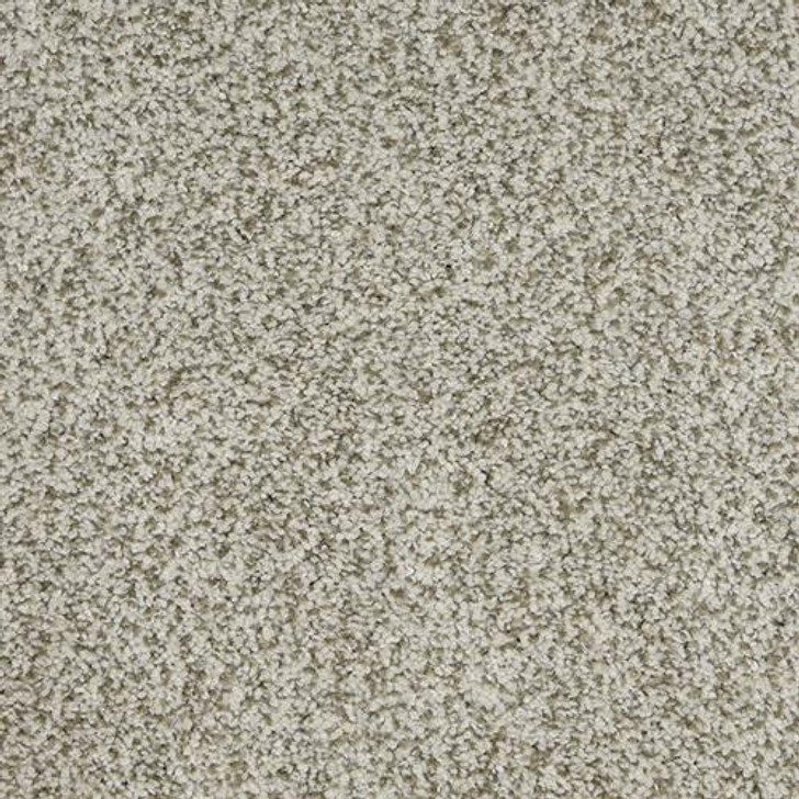 Dixie Home New Age D031 Residential Carpet