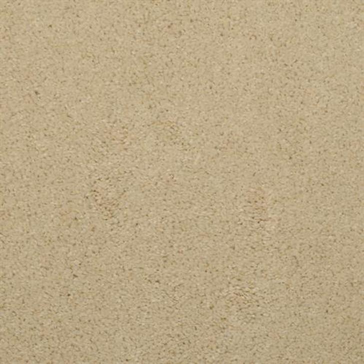 Dixie Home Soft & Silky 4699 Residential Carpet