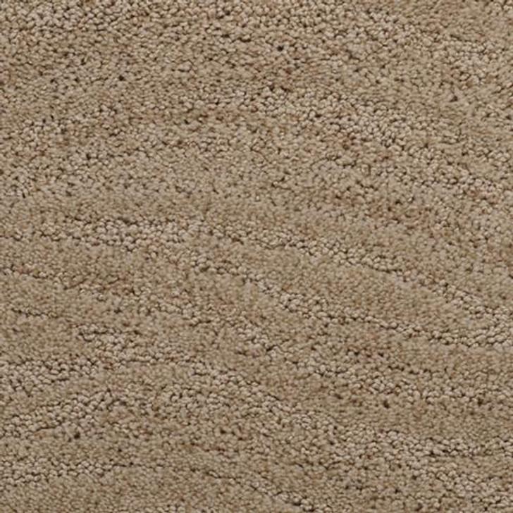 Dixie Home Taittinger 2608 Residential Carpet