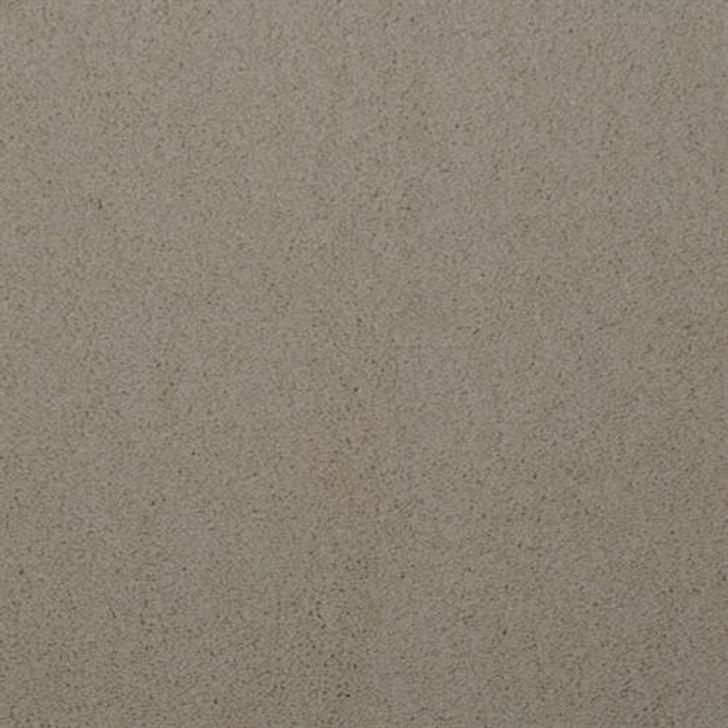 Dixie Home Touch of Velvet 5650 Residential Carpet
