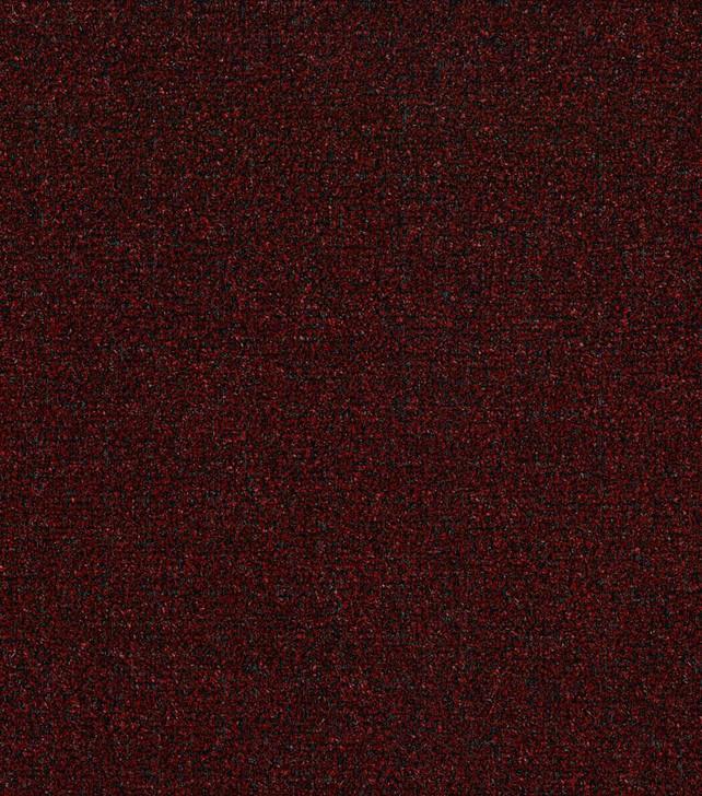 Shaw Philadelphia Tactic I 54623 Indoor Outdoor Turf Carpet