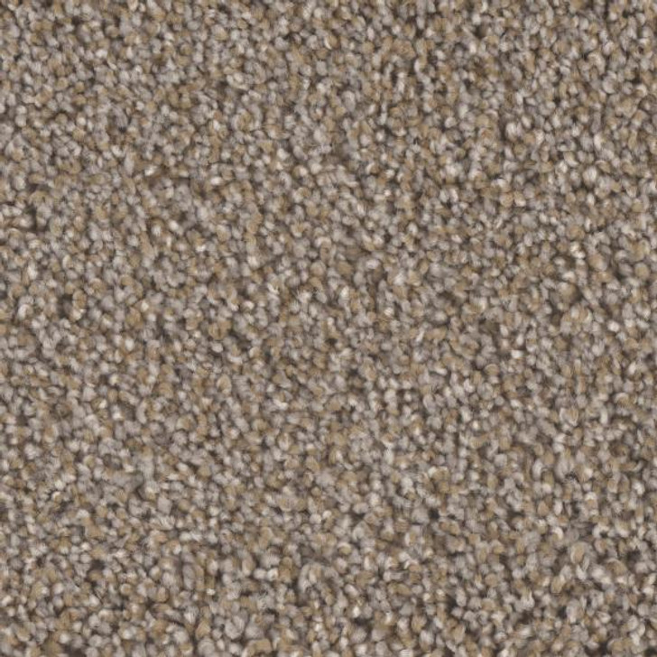 Phenix Blessed MB113 Residential Carpet