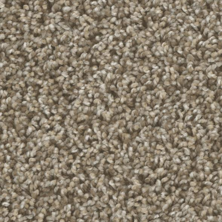 Phenix Bodega Bay MB100 Residential Carpet