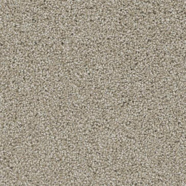 Phenix Bravo FE101 Residential Carpet
