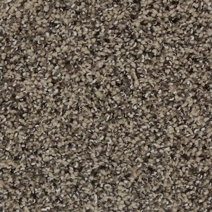 Mohawk Smartstrand Exquisite Accent 2Z17 Residential Carpet