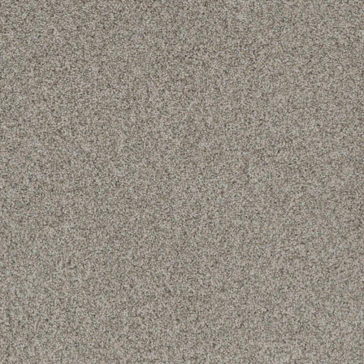 Dreamweaver Crown Garden II 2365 Residential Carpet