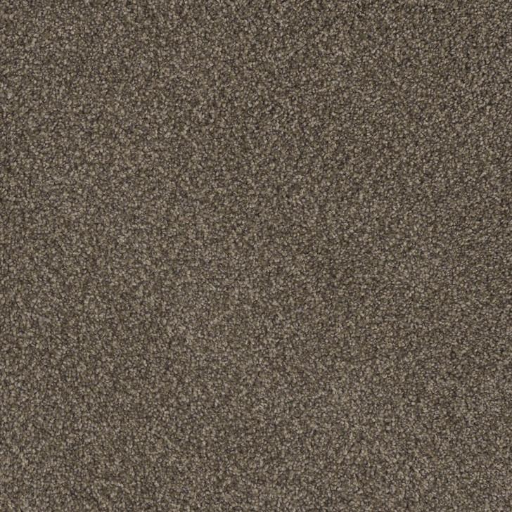 Dreamweaver Crown Garden III 2370 Residential Carpet