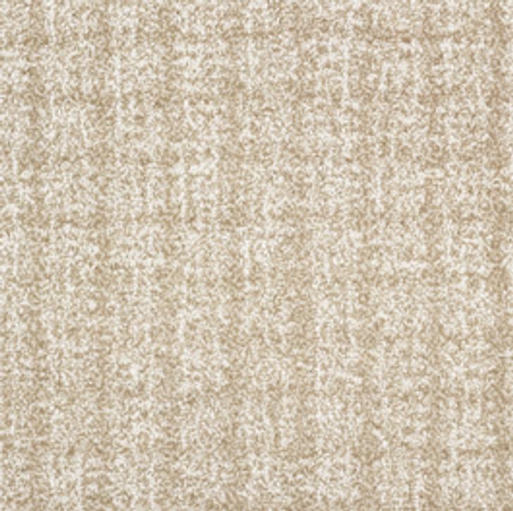 Stanton Antrim Behati Wool Fiber Residential Carpet