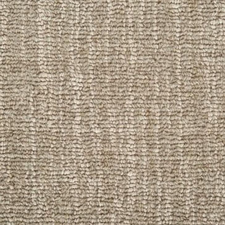 Stanton Antrim Daphne Wool Blend Residential Carpet