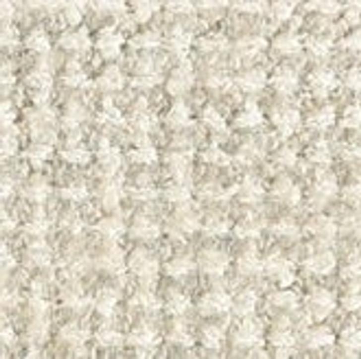 Stanton Antrim Dreamer Wool Blend Residential Carpet