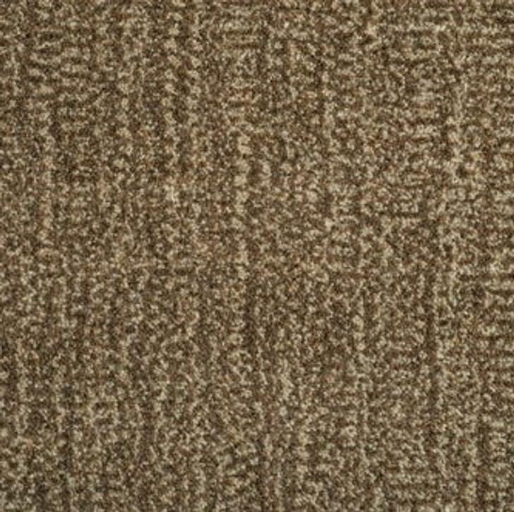 Stanton Antrim Lotus Wool Fiber Residential Carpet