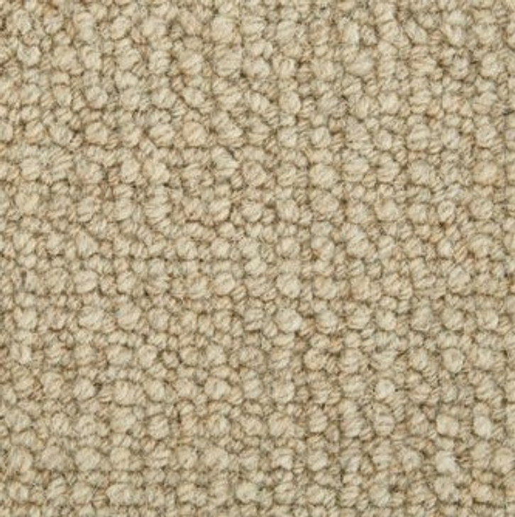 Stanton Antrim Nadia Wool Fiber Residential Carpet