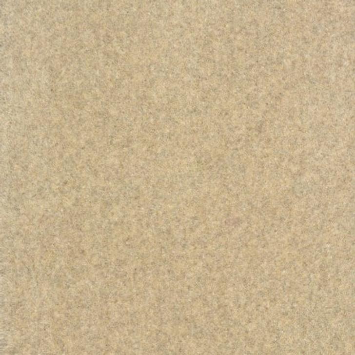 Stanton Antrim Natarra Wool Fiber Residential Carpet