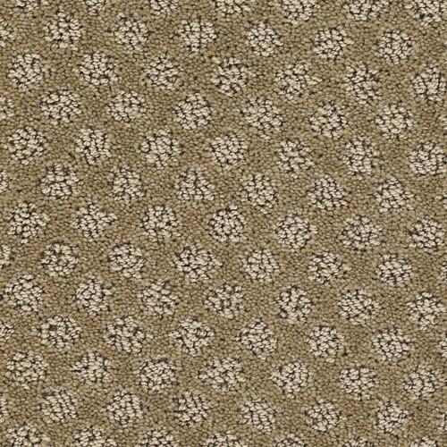 715-cashew-central-park-dream-weaver-residential-carpet.jpg
