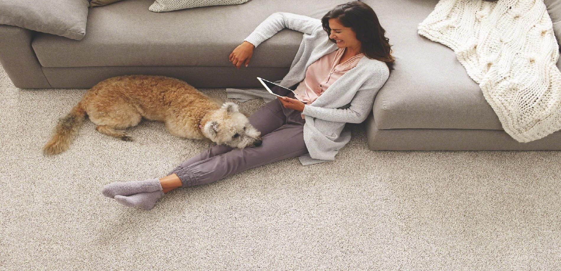 carpet-picture-47601.jpg