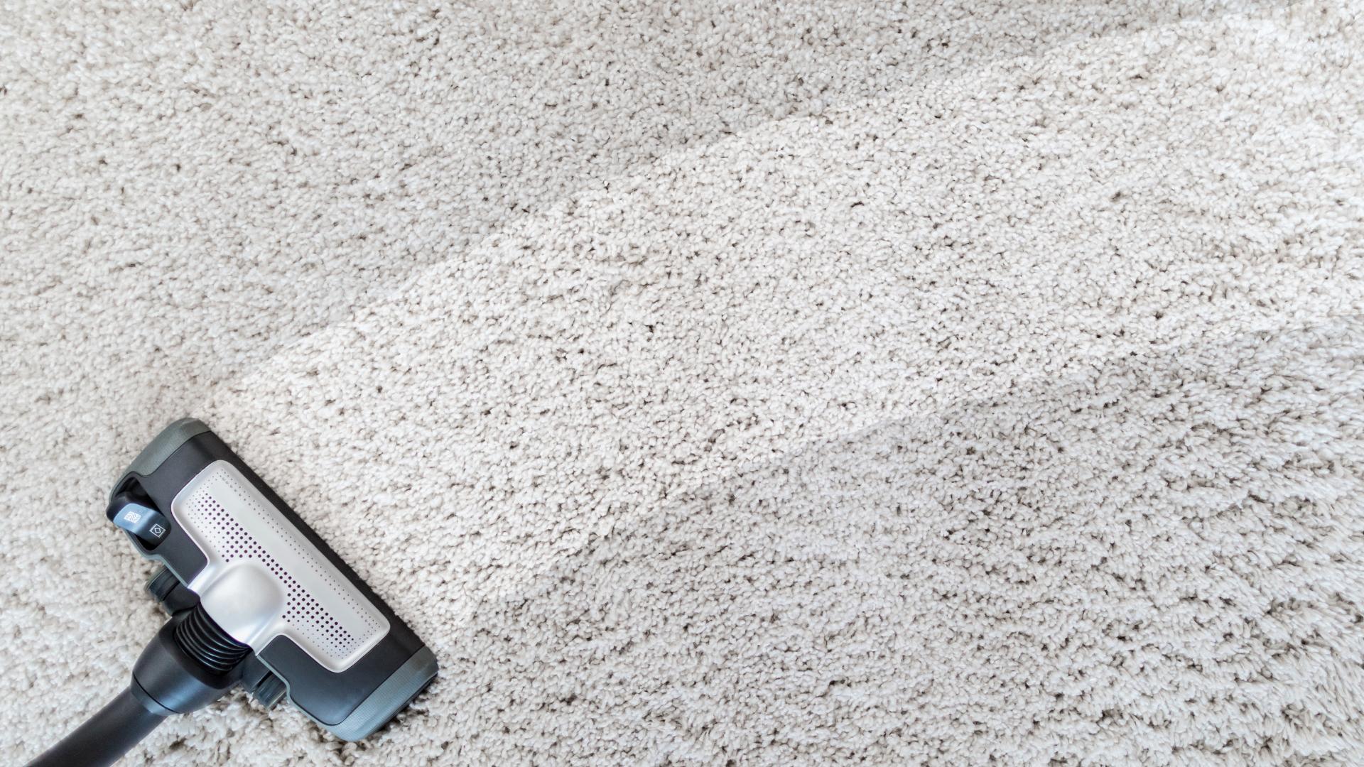 carpet-vacuum.png