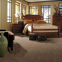 design twist silver shaw anso carpet