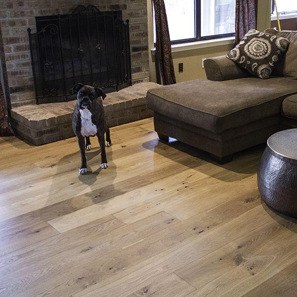 dog-on-hardwood.jpg