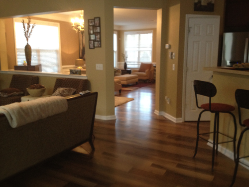 Tracee Saps's Living room Picture 1