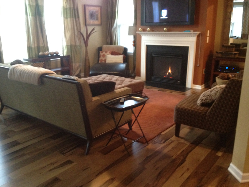 Tracee Saps's Living room Picture 2