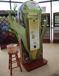 mohawk-smartstrand-carpet-corn-display-small.jpg