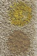 mustard-coffee-nylon-small.jpg