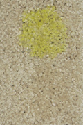 mustard-coffee-water-nylon-small.jpg