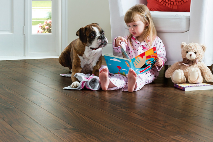 pet-friendly-flooring-georgia-carpet-industries-dot-com.jpg
